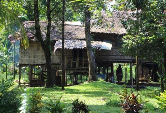 village 555 (2)